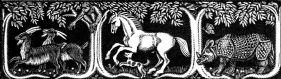 Goats, Horse, Rhino